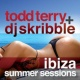 Todd Terry,Sted-E&Hybrid Heights/Mr V Crash
