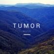 Mentor Tumor