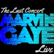 Marvin Gaye The Last Concert (Live)