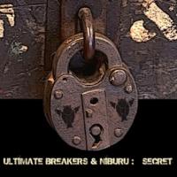 Ultimate Breakers & Niburu Secret