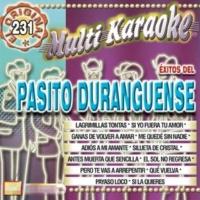 Multi Karaoke Éxito Del Pasito Duranguense