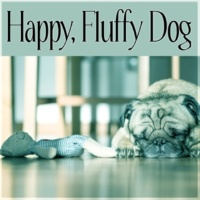 Calm Pets Music Academy Happy, Fluffy Dog - Instrumental Mellow Music and Calming Down Nature Sounds to Relax Your Dog & Cat When They Are Alone at Home, Soft Melodies for Puppies & Kittens That Will Keep Them Company