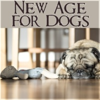 Calm Pets Music Academy New Age for Dogs - Calm Down Your Animal Companion, Soothing Nature Sounds for Puppies & Cats, Music for Pets