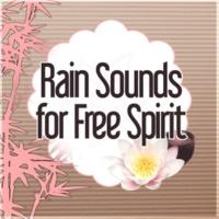 Massage Spa Academy Rain Sounds for Free Spirit - Calming Music for Well Being, Massage, Healing Meditation, Reiki