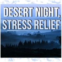 Anti Stress Academy Desert Night, Stress Relief - Spa Music, Wellness, Hydrotherapy, Massage Music, Nature Sounds, Easy Going