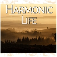 Joga Relaxing Music Zone Harmonic Life - Yoga, Relaxation, Meditation, Reiki, Well Being, Perfect Harmony, Relaxation Music