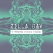 Zella Day Hypnotic [Vanic Remix]