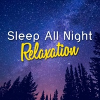 All Night Sleep Songs to Help You Relax Warm Embrace
