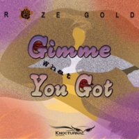 RozeGold Gimme What You Got - Single