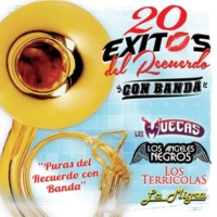 Varios Artistas 20 Exitos del Recuerdo - Con Banda