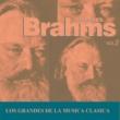 Various Artists Los Grandes de la Musica Clasica - Johannes Brahms Vol. 2