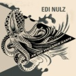 Edi Nulz Interlude II