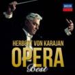 ミレッラ・フレーニ/ウィーン・フィルハーモニー管弦楽団/ヘルベルト・フォン・カラヤン 歌劇《蝶々夫人》: ある晴れた日 海のはるかかなたに〔ある晴れた日に〕