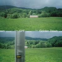 GRAPEVINE SPF / Golden Dawn