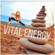 Guided Meditation Music Zone Vital Energy ‐ Relaxing Songs for Mindfulness Meditation & Yoga Exercises, Guided Imagery Music, Asian Zen Spa and Massage, Natural White Noise, Sounds of Nature