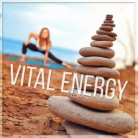 Guided Meditation Music Zone Vital Energy