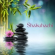 Shakuhachi Sakano Shakuhachi - Japanese Instrumental Flute Music for Zen Meditation and Mindfulness Breathing Exercises