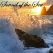 Nature Sounds Nature Music Sound of the Sea ‐ New Age Amazing Music with Sea & Ocean Waves Relaxing Nature Sounds
