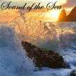 Nature Sounds Nature Music