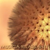 Armonia, Benessere e Musica Serenità (Chakra)