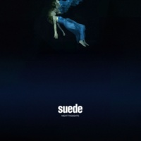 Suede Night Thoughts