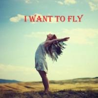 李洪 I want to fly