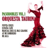 Orquesta Taurina Campanera