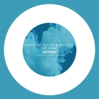 Antoine Delvig & Walcus Say What -Single