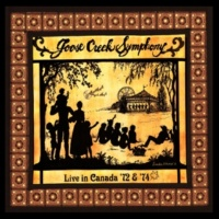 Goose Creek Symphony The Bottle Let Me Down (Live)