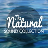 Nature Sound Collection Water in Motion