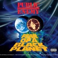 パブリック・エネミー Fear Of A Black Planet