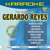 Multi Karaoke El Rey De Los Caminos