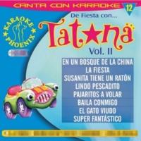 Multi Karaoke La Fiesta
