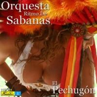 Orquesta Ritmo de Sabanas/Lucho Argaín Ramita de Matimba
