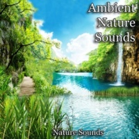 Nature Sounds English Country Garden