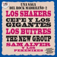 Los Shakers Shout