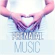 Pregnancy New Age Music Zone