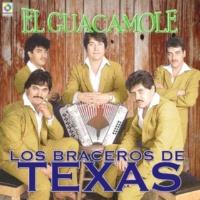 Los Braceros De Texas A Todo Dar