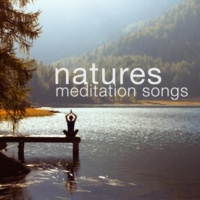 Nature Sounds Meditation Changing Waters