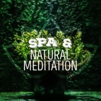 Nature Spa Meditation Music Water Wheel