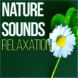 Hypnosis Nature Sounds Universe