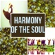 Harmony Nature Sounds Academy Harmony of the Soul - Relaxing Instrumental Music, Soothing Sounds for Massage, Gentle Touch, Calming Music