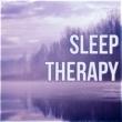 Deep Sleep Moonlight Academy