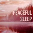 Deep Sleep Meditation Oasis