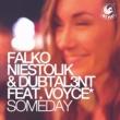 Falko Niestolik & Dubtal3nt Someday (feat. Voyce*)