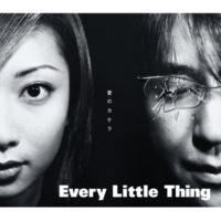 Every Little Thing 愛のカケラ (Steppin' Hard Enough Mix) remixed by SPASM
