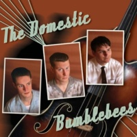 The Domestic Bumblebees You Ain't Too Old