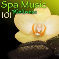 Pure Massage Music Spa Songs (Shiatsu)