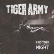Tiger Army Prisoner of the Night