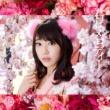 HKT48 君はメロディー<Type C>(初回限定盤)